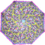 Multicolor Printed Umbrella with Frill