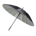 Black Silver Umbrella